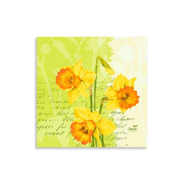 "24er Zelltuchserviette ""Spring Flowers"""